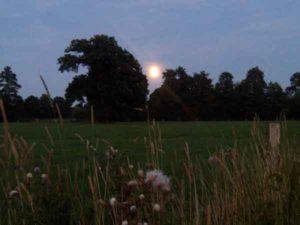 de maan boven een weiland in de omgeving van Wohali
