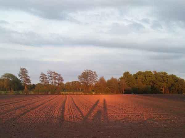 zondsondergang in de omgeving van wohali