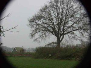 vogels spotten bij Wohali op Mini Camping Twekkelo