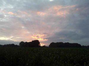 prachtige zonsondergang boven het maisveld bij Mini Camping Twekkelo