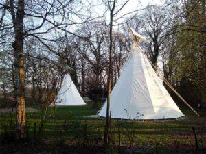 het veld met tipi´s op mini camping Twekkelo
